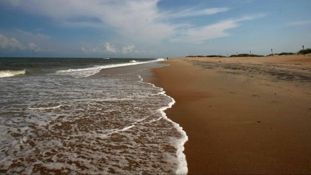 A stretch of beach at the Cape Hatteras National Seashore.