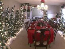 Woman fills home with 27 Christmas trees