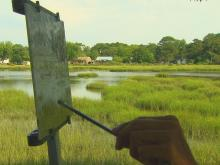 Morehead City painter