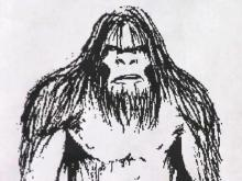 NC's own 'Big Foot' reported in western town