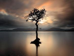 Photo by Scottish photographer Grant Glendinning