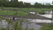 IMAGES: Mud, anger left after state drains Godwin pond
