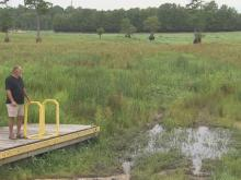 Rhodes Pond