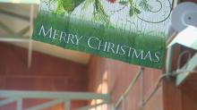 IMAGES: Christmas tree decorating an elaborate task for Raleigh woman