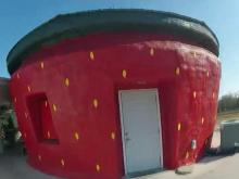 Berry family serves ice cream in world's largest strawberry