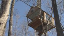 Elaborate tree house could draw guests in Orange County