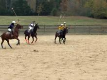 Polo growing in popularity in Triangle