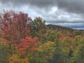 IMAGES: Bill Leslie: Fall foliage frustrations