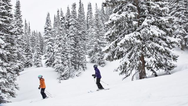 An instructor and participant in a women's ski camp at the Alta Ski Area in Utah, Jan. 21, 2018. There are so many women's ski camps nowadays that you should find one that's right for you — unless you are a true beginner, in which case it's best to look at regular lessons. (Kim Raff/The New York Times)