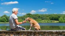 Cambridge : Spotlight : Pet Companionship