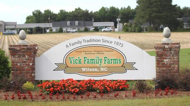 Wilson : Spotlight : Vick Family Farms