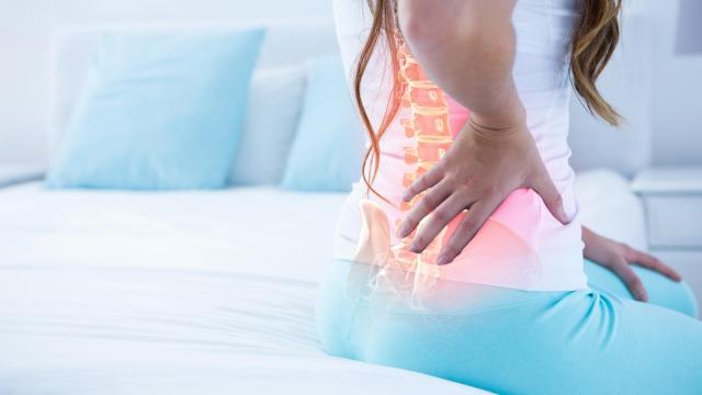 The intervertebral disc is the spine's shock absorber. As you age, proteoglycans (a type of tissue protein) in your disc's nucleus begin to decrease. These proteoglycans are vital for the health of the disc and deficits can lead to pain. (Wavebreak Media Ltd/Big Stock Photo)