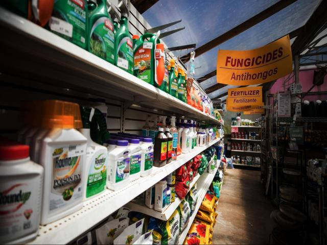 Hundreds of cancer patients who have used Roundup are pursuing a class-action lawsuit against Monsanto, claiming the weed killer's active ingredient, glyphosate, is responsible for their cancer. (Tushar Yadav/Big Stock Photo)