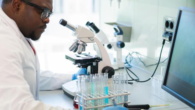 Pharmaceutical giant Pfizer announced plans for a state-of-the-art gene therapy manufacturing facility in Sanford as part of the company's ongoing investment in the area. (shmeljov/Big Stock Photo)