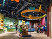 Little Washington : Spotlight : NC Estuarium