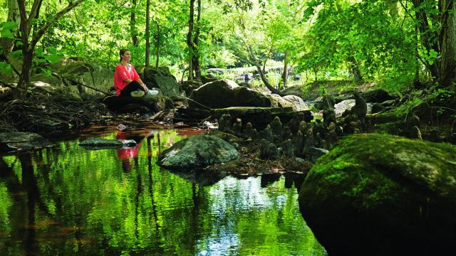 From parks to rivers to historic country estates, there are plenty of ways to get outside and explore in Nash County. (Photo Courtesy of Nash County Economic Development)