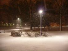 Early Morning Snow Falling at NCSU
