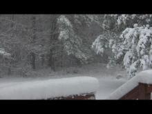 Snow fall in Apex - 8:30AM