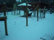 Snow Monday 2011