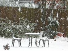 Southern Pines/Whispering Pines Snow