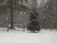 Snowing in Cameron, NC