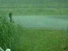 Hail Storm Warsaw, NC