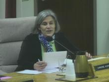 Public hearing: Wake schools budget