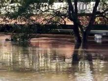 Neuse River flooding in Smithfield NC