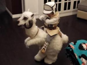 One lucky little boy had one singularly incredible Star Wars costume handmade for him, complete with wrist communication system and only slightly wonky Tauntaun. (Deseret Photo)