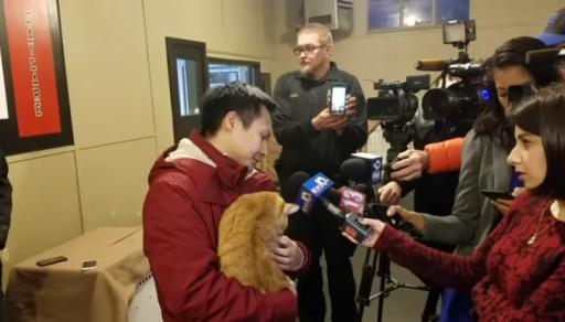 A cat from Brooklyn definitely used one of its nine lives to survive a 240-mile joyride under the hood of a minivan. (Deseret Photo)