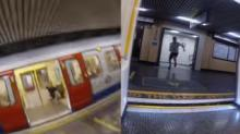 IMAGE: Have You Seen This? Man vs. train in race against time
