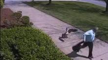 IMAGE: Have You Seen This? Detective attacked by angry goose