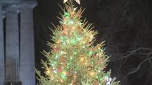 Capitol lights Christmas tree