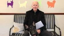 IMAGE: Biden Family's Dog Major Will Be First-ever Shelter Dog In The White House