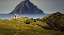 IMAGE: Remote Irish Island Hiring 2 People To Run Coffee Shop And Guest Cottages