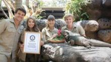 IMAGE: Irwin Family's Rhinoceros Iguana Was Declared The Oldest In The World