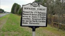 Hofmann Forest sign