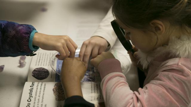 NC Homeschooling