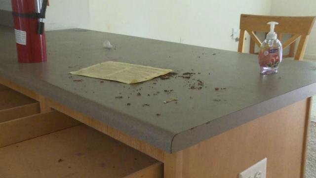 ECU families shocked at conditions of some student apartments