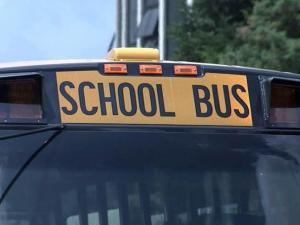 Wake school bus generic