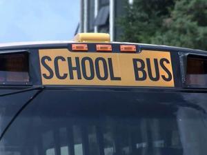 Wake school bus generic