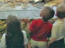 Children pick subjects at Virginia magnet school