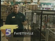 Pet Shop Wants Its Bird Back
