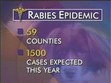 Rabies Continues to Spread Through NC