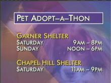 Pet Adoptions in High Gear This Weekend