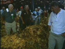 Eastern Tobacco Belt Opens 1997 Selling Season