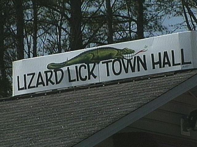 Lizzard lick n carolina