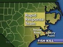 State Scientist Study Neuse Fish Kill