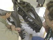 Museum Workers Reconstruct Piece of 'Pre-History'