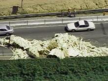 Logging Truck Loses Load on I-85, Highway 70 in Durham